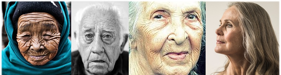 The many faces of skin aging